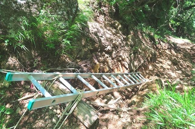 桑留尾ルート登山道の梯子