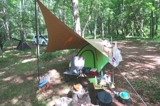 テント・タープ設営