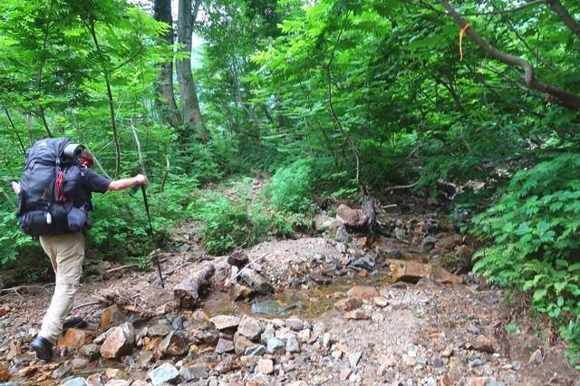石転びの出合まで樹林帯歩き