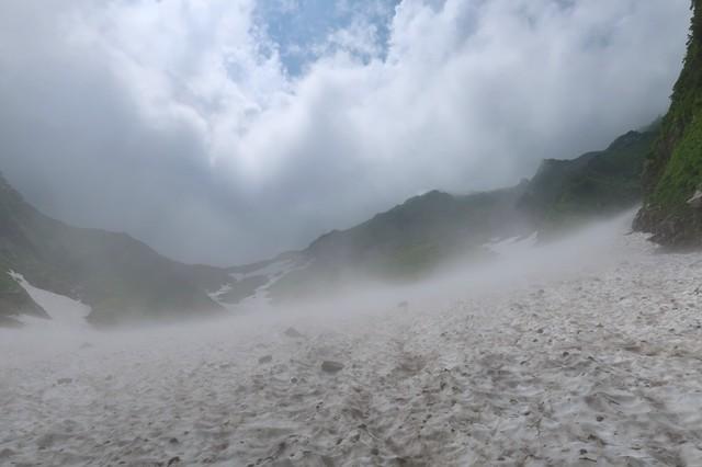 石転び沢雪渓の草付き
