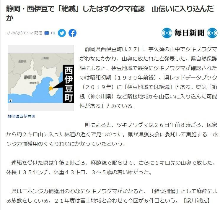 伊豆半島でツキノワグマ出没ニュース詳細毎日新聞