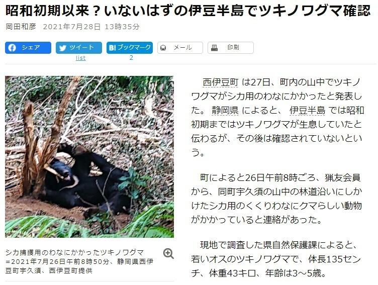 伊豆半島のクマ出没情報朝日新聞