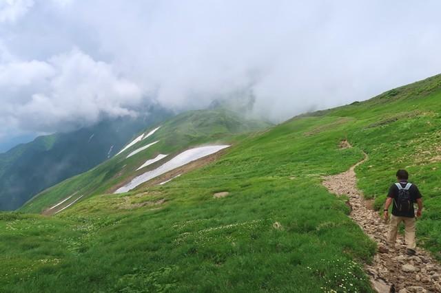 黄泉の国へ行くような雰囲気の登山道