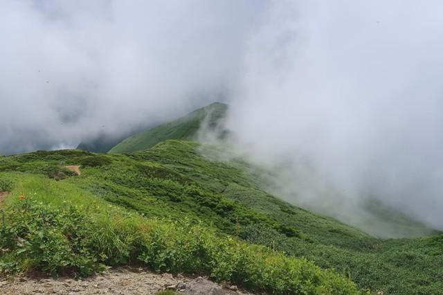 幻想的な大日岳の登山道