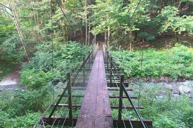 根原の吊橋を渡っている様子