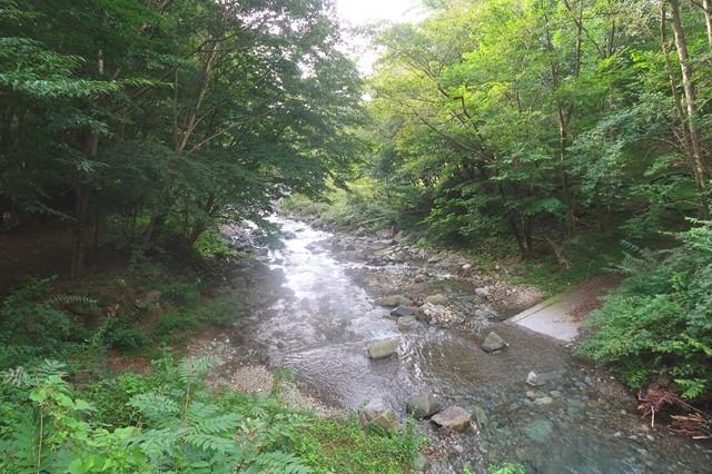 根原の吊橋周辺の景色