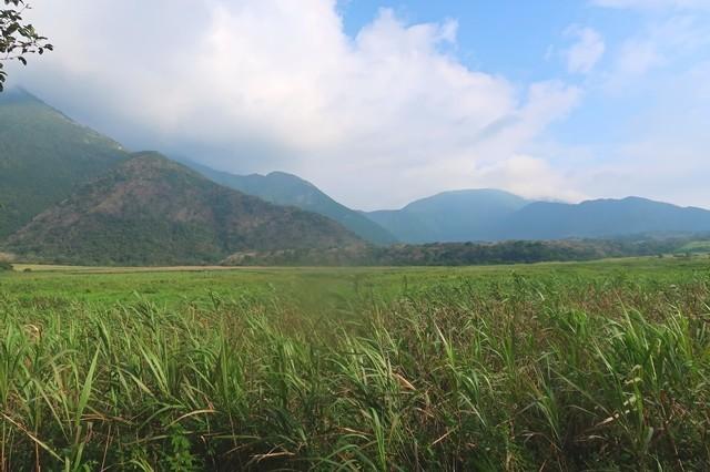 毛無山周辺尾瀬の様な景色
