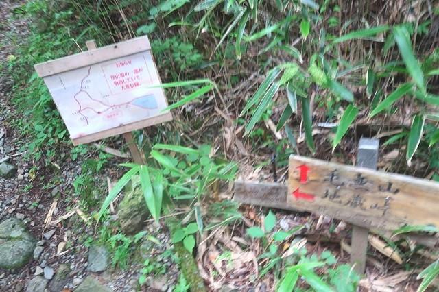 地蔵峠へのルートと毛無山への分岐