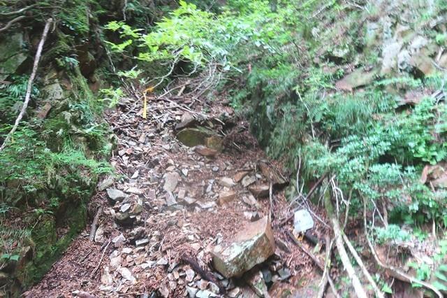 滝がある方に登り右岸に地蔵峠へのルート続く