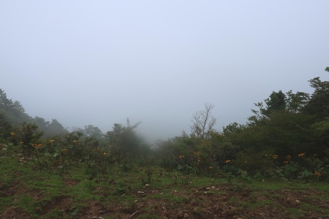 毛無山の山頂南側の展望