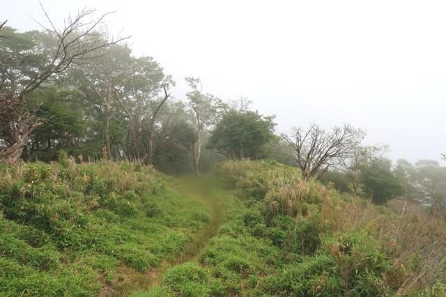 高見岳からタカデッキの縦走路景色