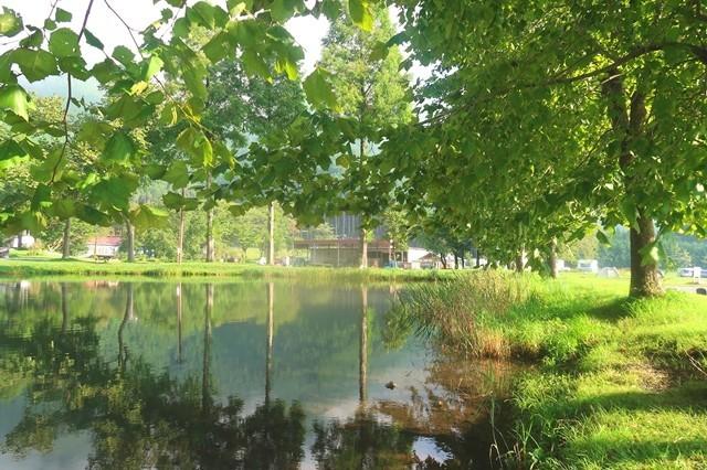 キャンプサイトの中央に池と景色