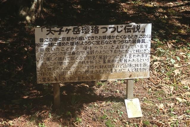 天子ヶ岳つつじ伝説解説の看板