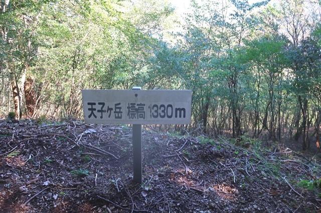 富士見台の所にある天子ヶ岳山頂プレート