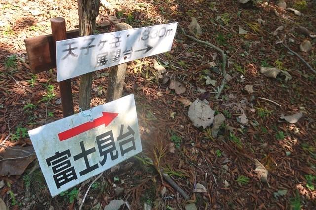 天子ヶ岳の展望台富士見台