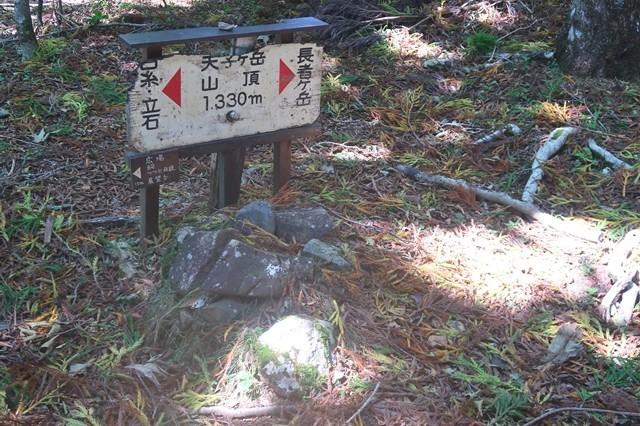 天子ヶ岳の頂上(最高点)と三角点