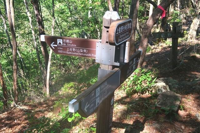 長者ヶ岳登山ルートを少し思親山方面分岐