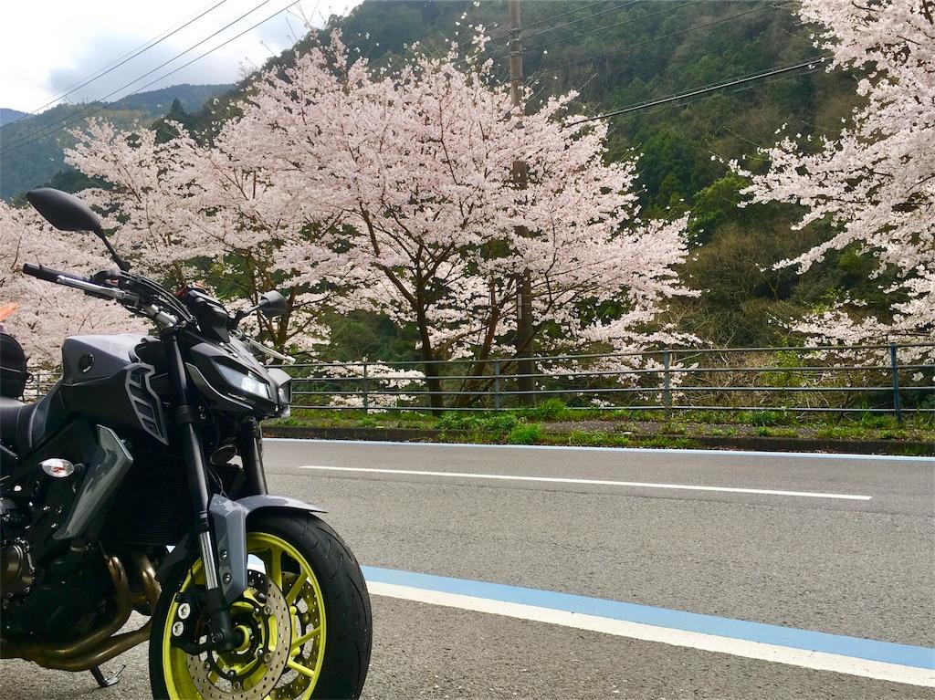 f:id:aoi-hanayama:20170409170846j:image