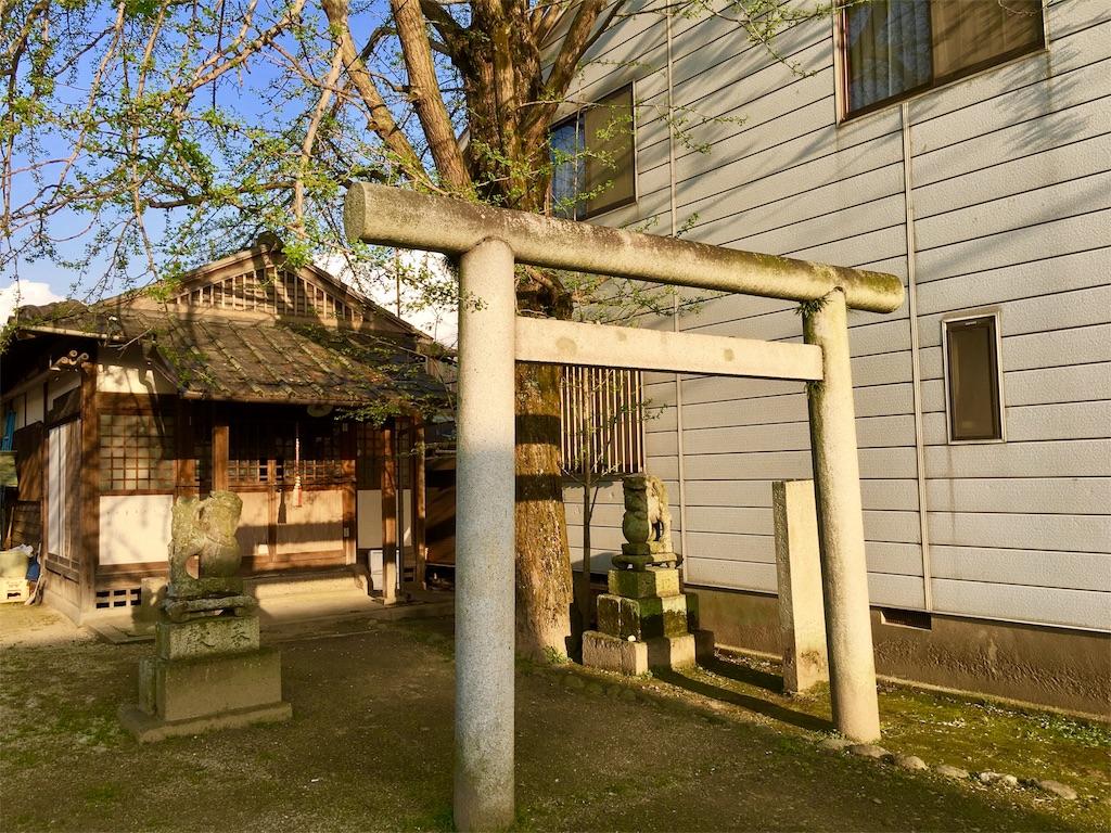 f:id:aoi-hanayama:20170418215145j:image