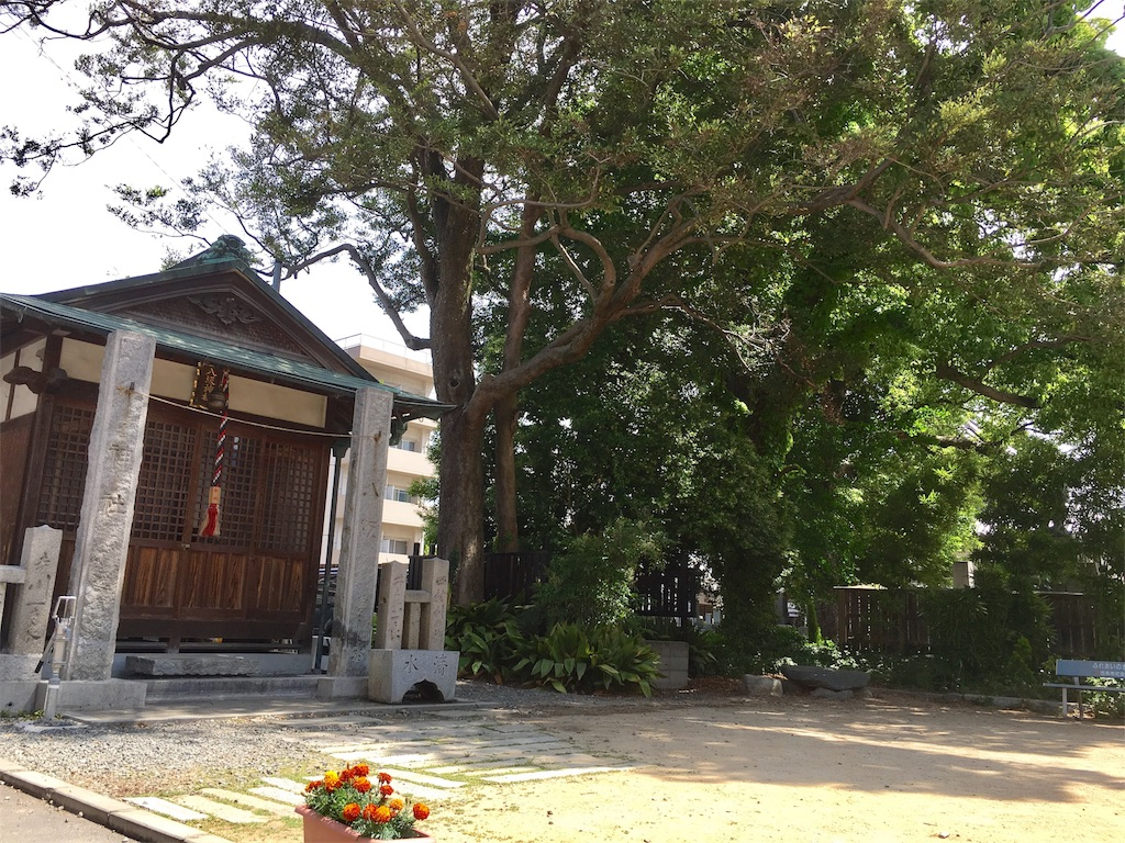 f:id:aoi-hanayama:20170515114603j:image