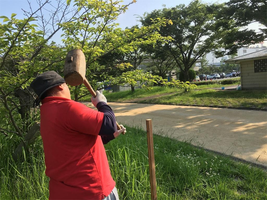 f:id:aoi-hanayama:20170722135714j:image