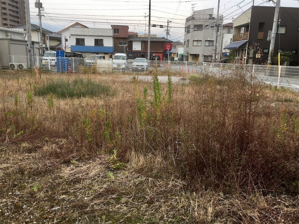 f:id:aoi-hanayama:20171126104501j:image
