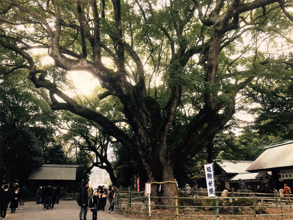 f:id:aoi-hanayama:20180101125417j:image