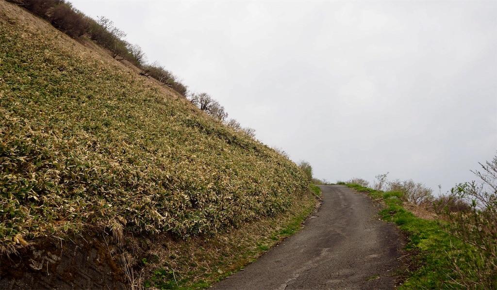 f:id:aoi-hanayama:20180430194534j:image