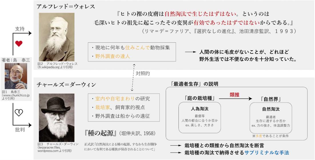 f:id:aoi-lab:20191002183502p:plain