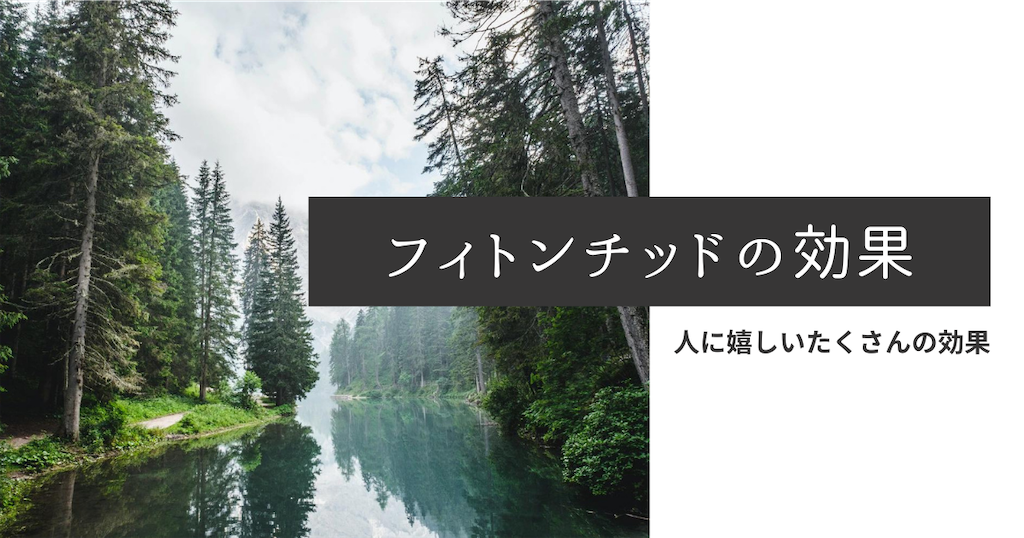 f:id:aoi_kino_ouchi:20210926104442p:image