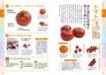 [毎日使える!]毎日使える! 野菜の教科書