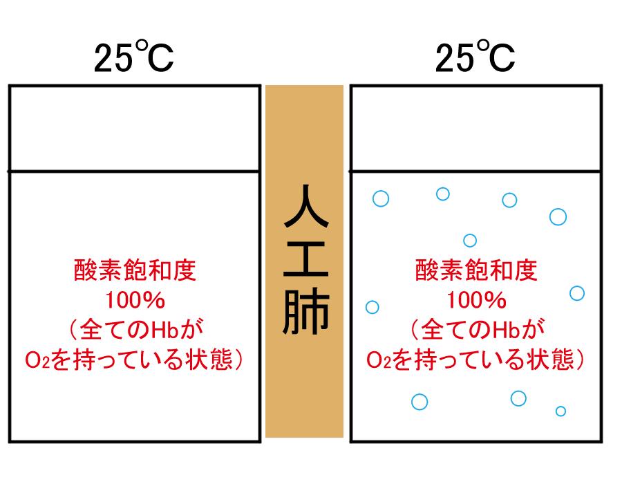 f:id:aoichannel0620:20210516084910j:plain