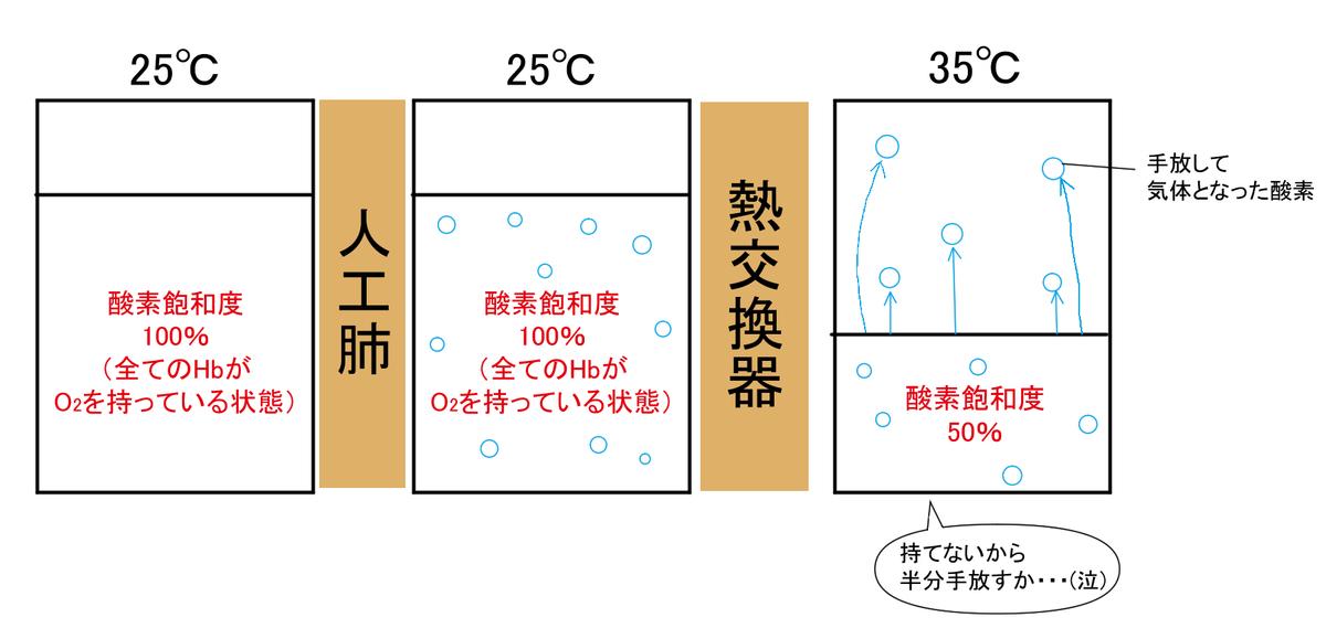 f:id:aoichannel0620:20210516090112j:plain