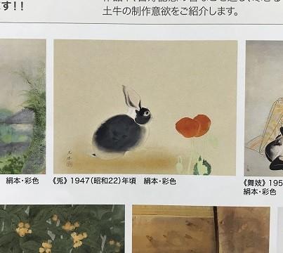 f:id:aoifusen:20190219224929j:plain