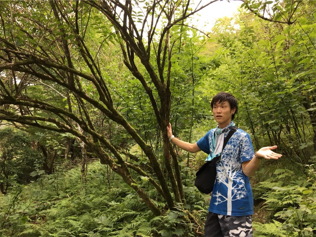 f:id:aoihoshi888:20180919065902j:image