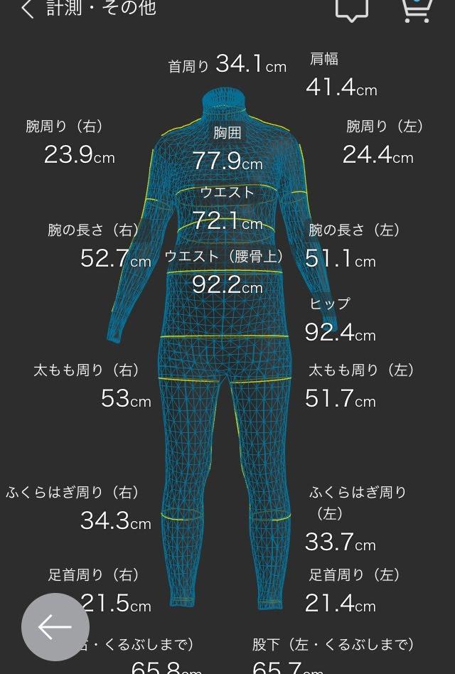 f:id:aoikame:20181012194308j:plain