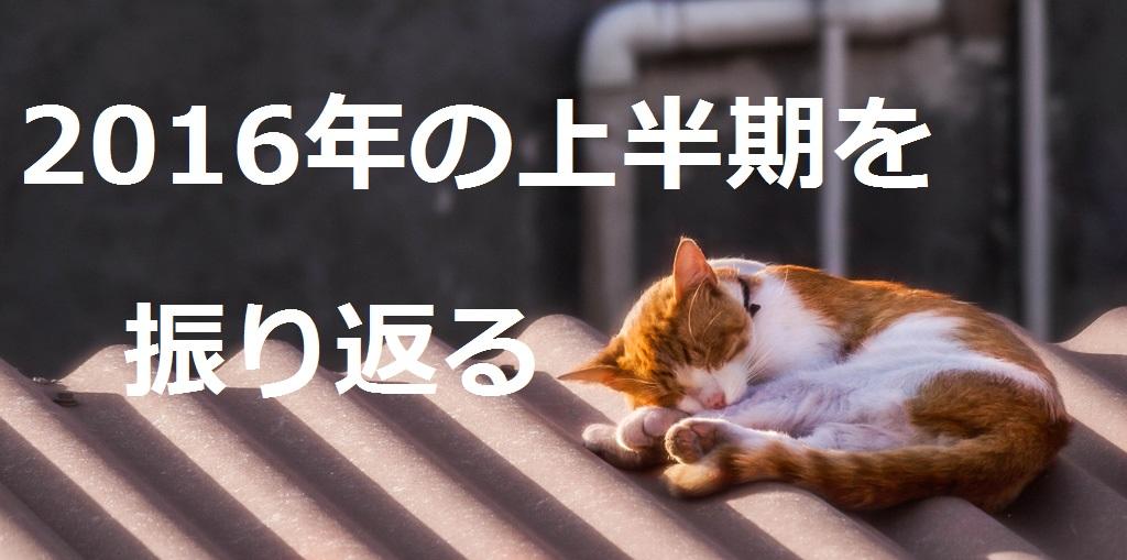 f:id:aoikara:20160628192800j:plain