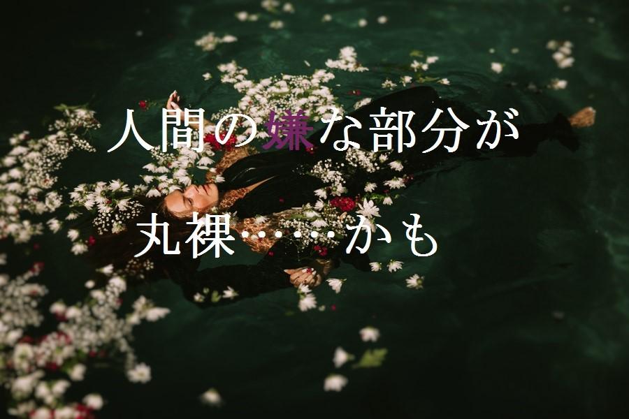 f:id:aoikara:20160721204731j:plain