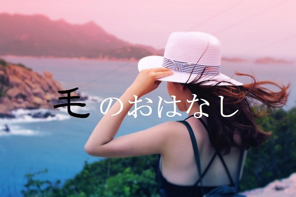 f:id:aoikara:20160722144212j:plain