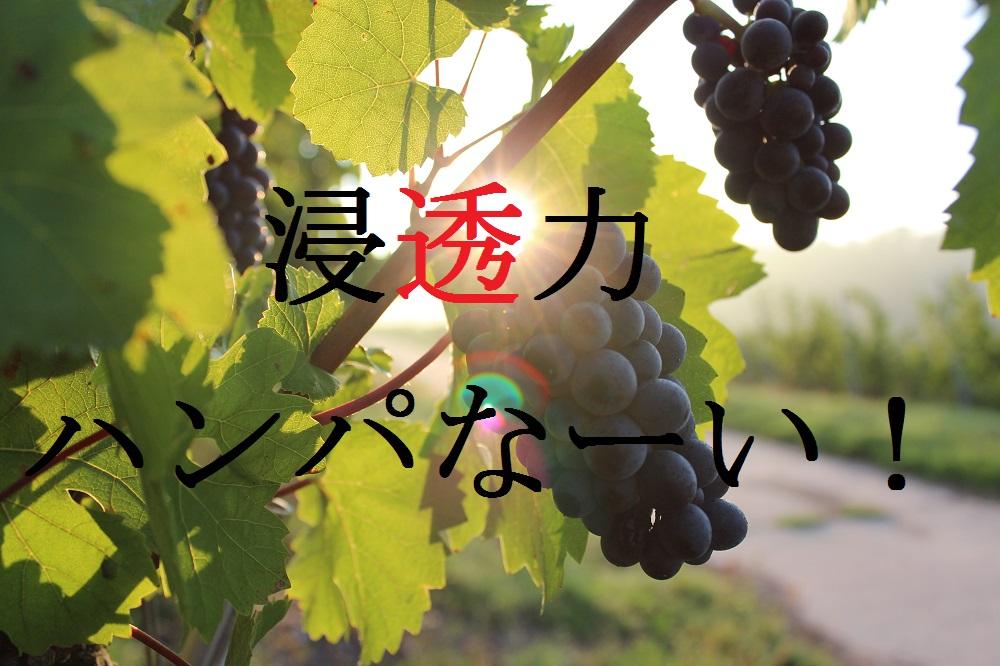 f:id:aoikara:20161028130626j:plain