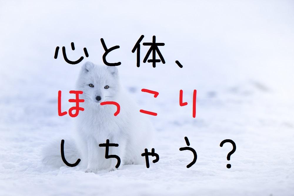 f:id:aoikara:20170127200712j:plain