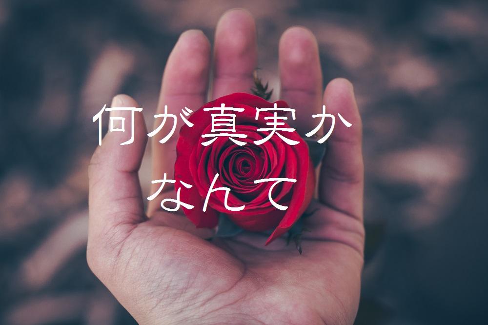 f:id:aoikara:20170219190805j:plain