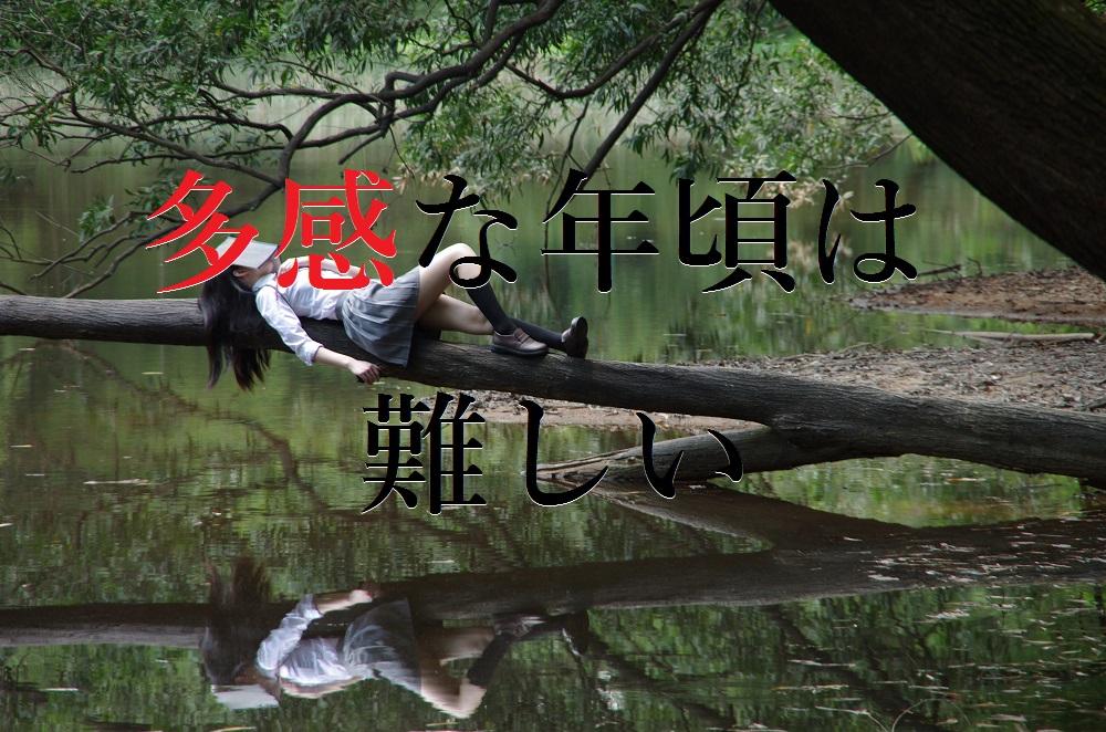 f:id:aoikara:20170317144438j:plain