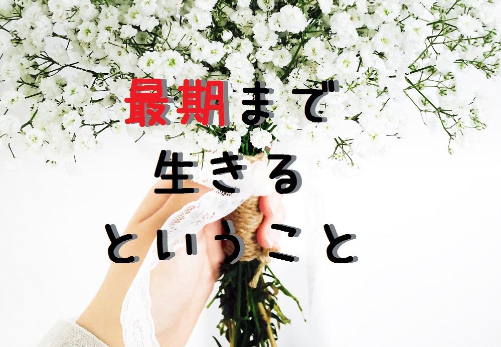 f:id:aoikara:20170330171450j:plain