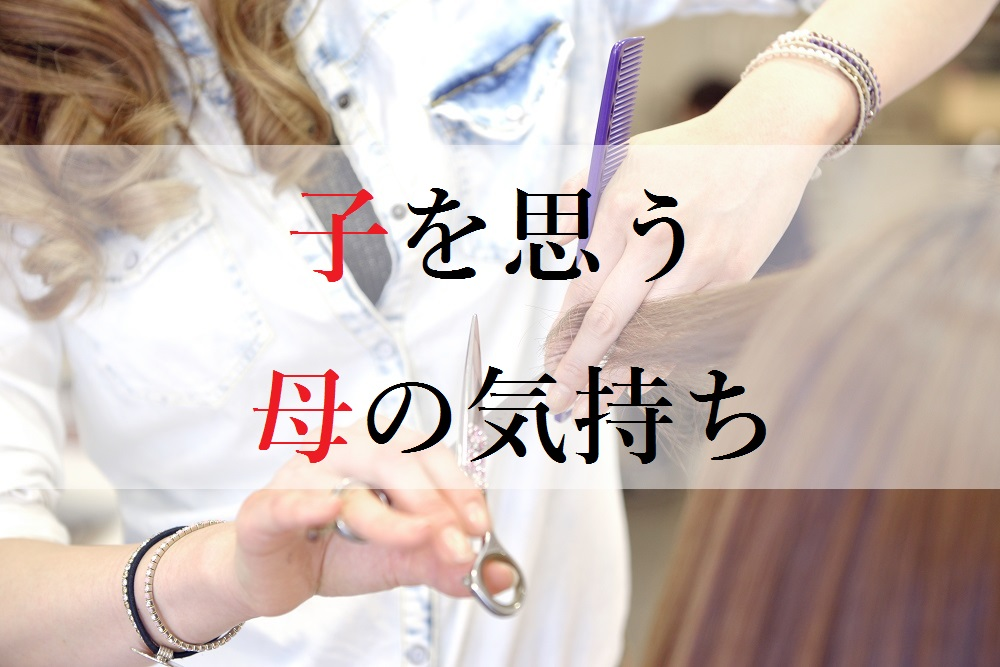 f:id:aoikara:20170507203002j:plain