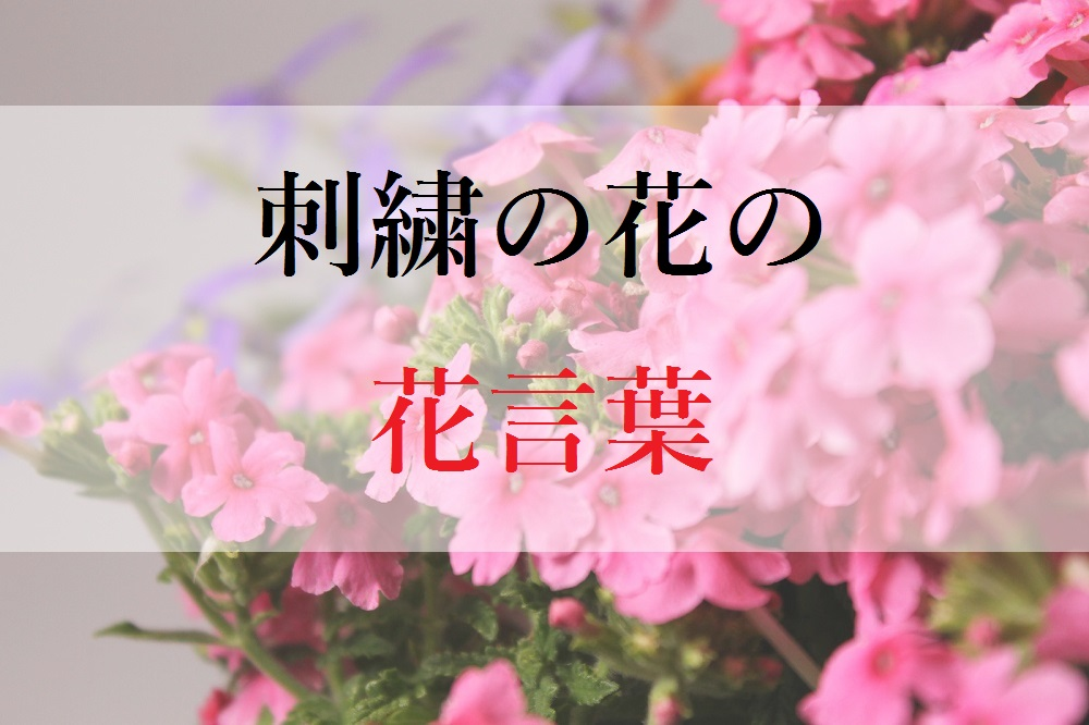 f:id:aoikara:20170511171453j:plain