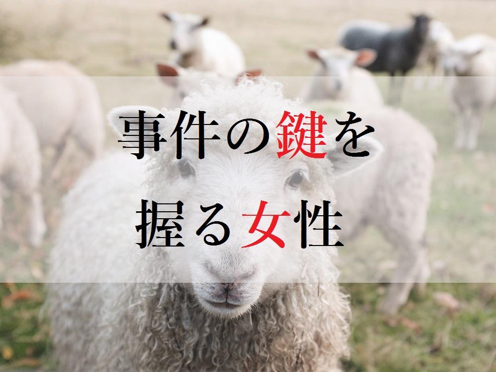 f:id:aoikara:20170511205937j:plain