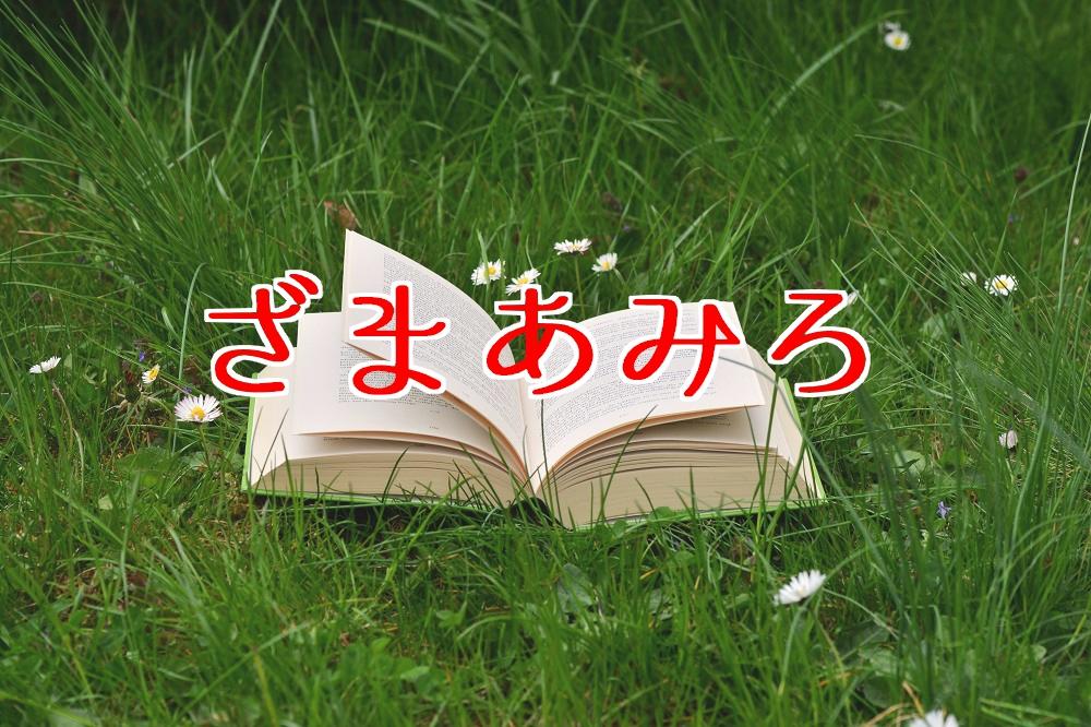 f:id:aoikara:20170519191811j:plain