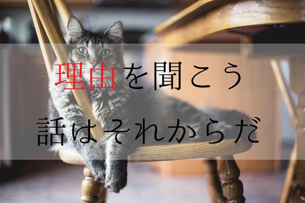 f:id:aoikara:20170602213327j:plain