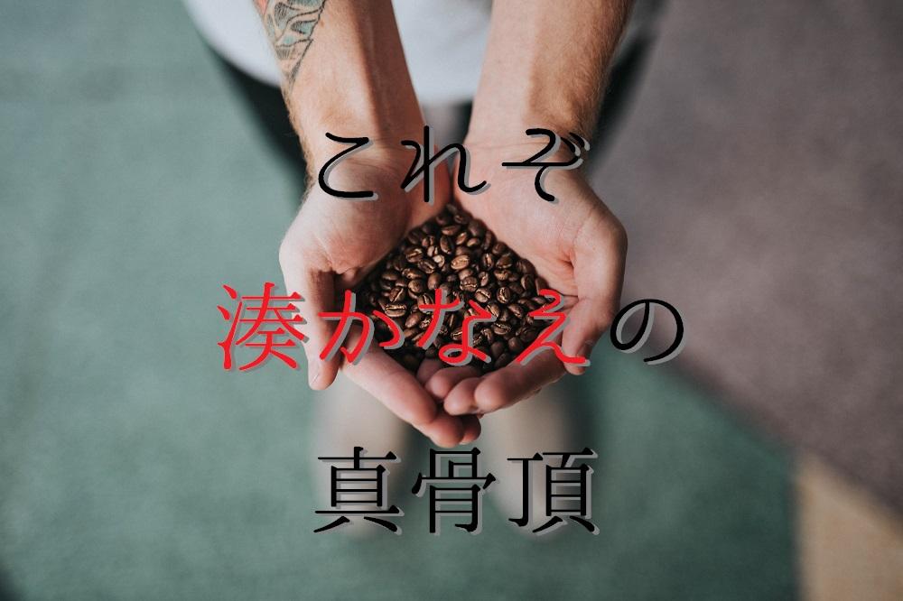 f:id:aoikara:20170610203211j:plain